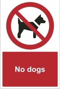 TOU018 - No dogs