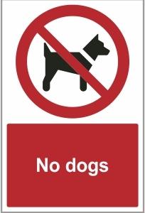 SEC019 - No dogs