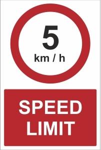 CAR021 - 5kmh speed limit