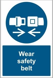 CAR038 - Wear safety belt
