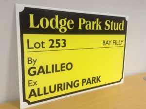 Stable Door Card for Record-breaking Galileo/Alluring Park filly.