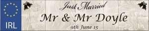 Wedding Car Plate Mr Mr2