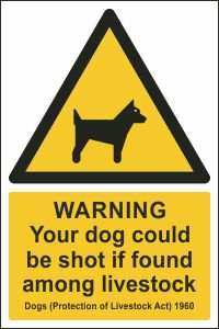 Warning - Your Dog Could be Shot