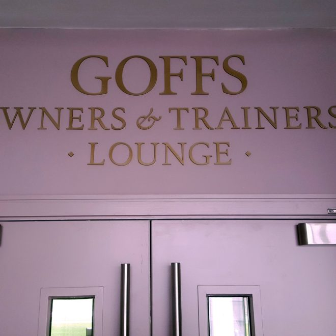 punchestown - raised goffs